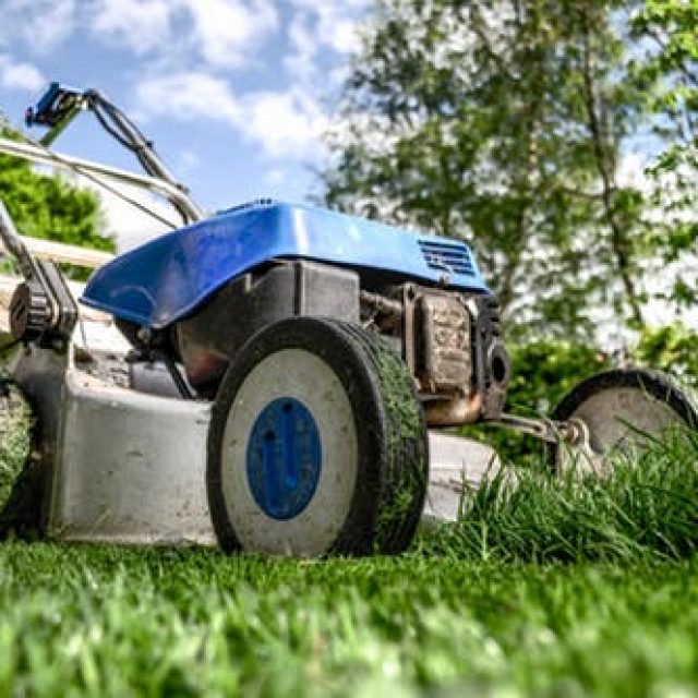 Why You Must Have Lawn